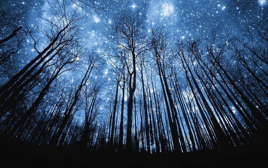 Somos Cenizas De Las Estrellas