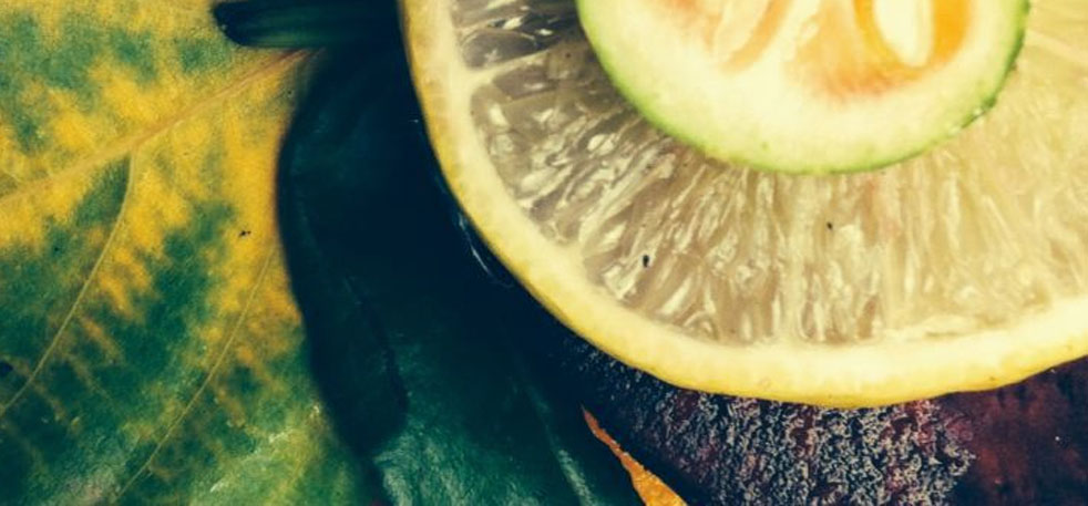 """Únete A Nuestra Pequeña """"gran"""" Revolución De Alimentación Consciente Y Cocina Creativa"""