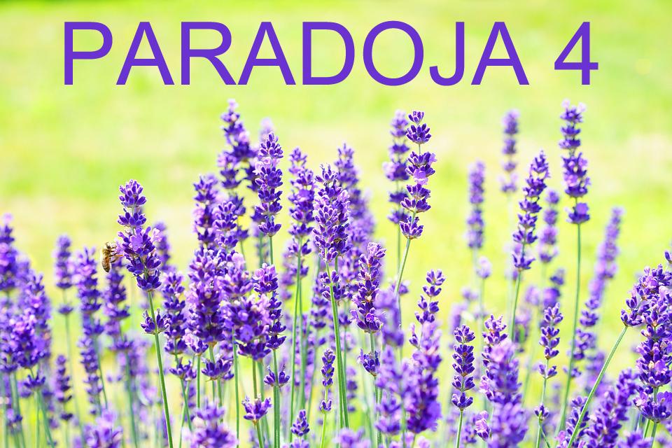 PARADOJA 4
