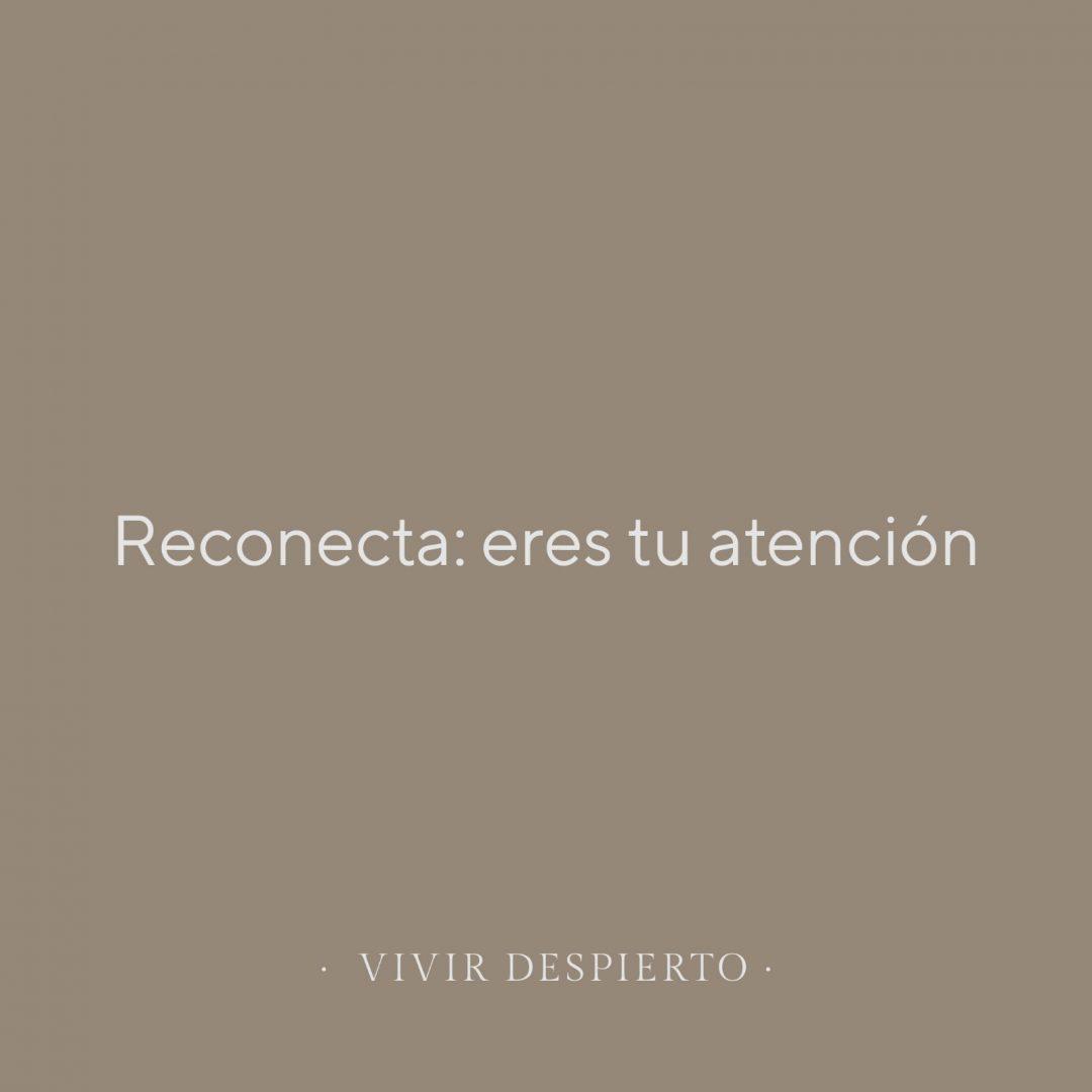 RECONECTA: ERES TU ATENCIÓN